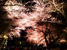 新潟市ネイルサロン aura pro ~megumi流 ネイルライフ~-20100410203159.jpg