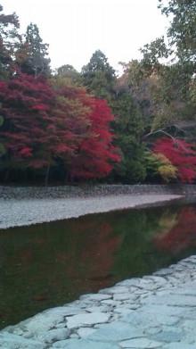 新潟市ネイルサロン aura pro ~megumi流 ネイルライフ~-F1000287.jpg
